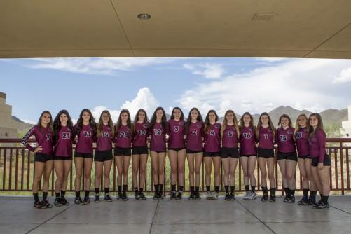 2013 Varsity Team